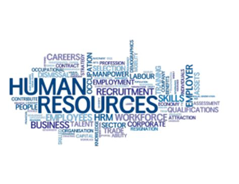 San Diego Mba Human Resources by Hr Outsourcing In San Diego With Hro Services