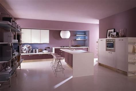 pink kitchen cabinets cabinets for kitchen pink kitchen cabinets pictures
