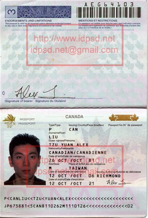 canadian passport template canada passport psd template canada passport psd