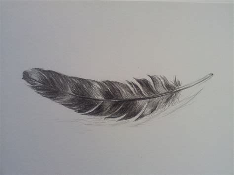 Tattoo Inspired Home Decor by Original Feather Drawing Pencil Sketch
