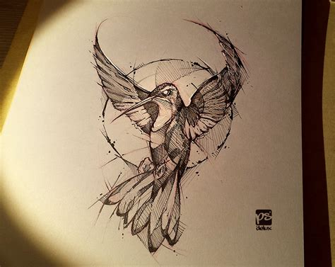 hummingbird sketch da psdelux by psdeluxe on deviantart