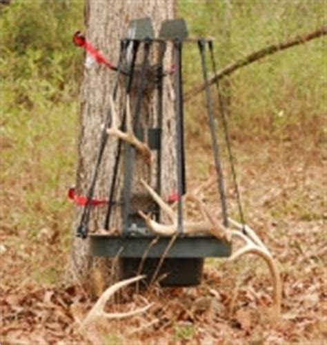 Shed Catcher by Description How To Build A Shed Antler Trap Shed Plans