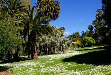 Hobart Botanical Gardens Restaurant Royal Tasmanian Botanical Gardens Restaurant Garden Ftempo