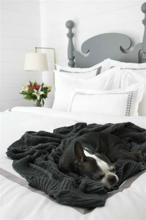 most comfortable blankets buying the best most comfortable sheets driven by decor