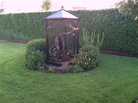 backyard aviary outdoor aviary