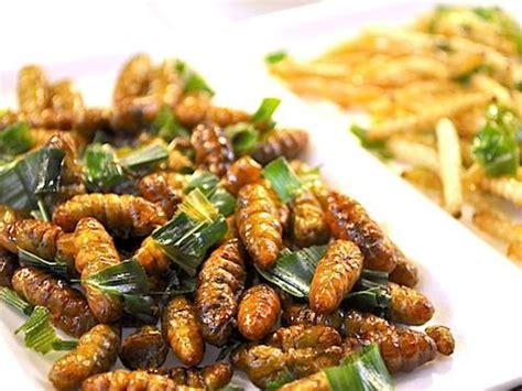 cuisine insectes comestibles info culture lutte contre la faim la rdc se tourne vers