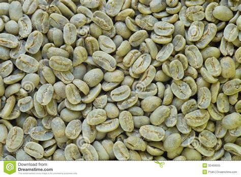 Green Coffee Beans. Royalty Free Stock Photo   Image: 32459555