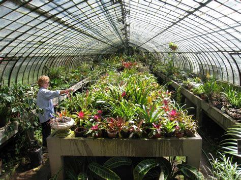 gardening backyard pretty greenhouse garden ideas quecasita