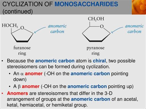 carbohydrates two important functions ppt important functions of carbohydrates powerpoint
