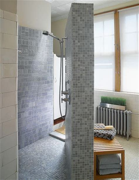 Doorless Shower Small Bathroom Walk In Doorless Shower Design Ideas Design Small
