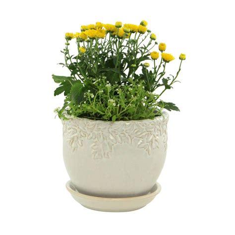 Indoor Planters Home Depot by Indoor Plants Garden Plants Flowers Garden