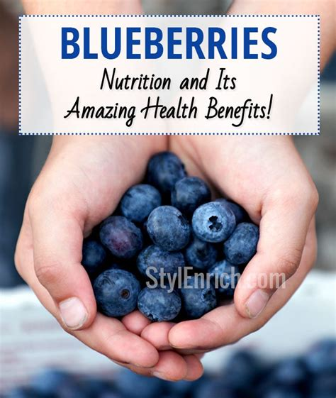 carbohydrates blueberries blueberries nutrition and its amazing health benefits