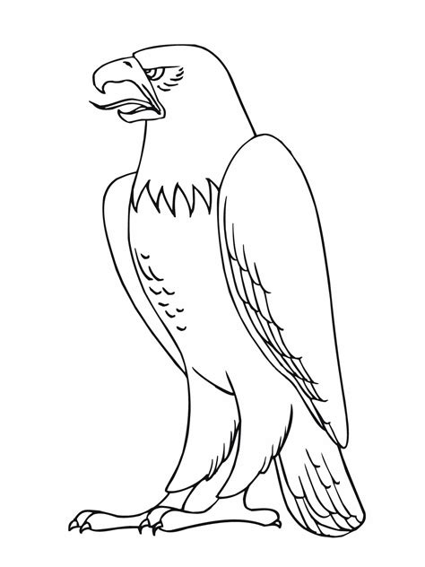 Free Printable Bald Eagle Coloring Pages For Kids Coloring Pages Of