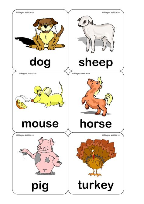 printable real animal flash cards farm animal flash cards printable plantillas pinterest