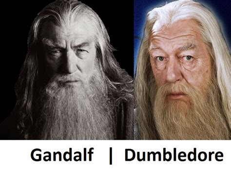 actor who plays gandalf and dumbledore same guy gandalf dumbledore