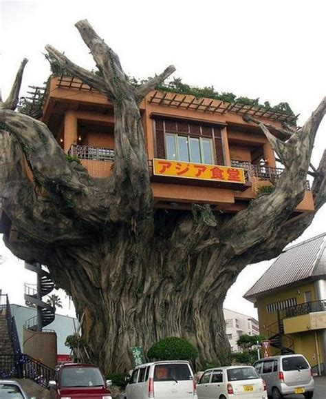 Yellow Treehouse Restaurant New Zealand - unique and creative tree houses