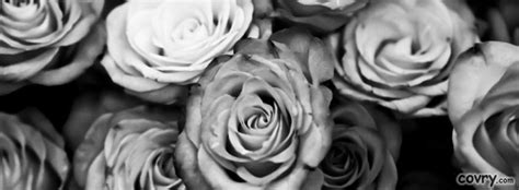 Black And White Cover by Roses Black And White Cover Covry