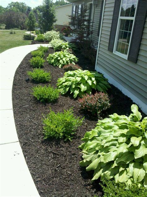 mulch and bushes like this i d do hosta grass hosta grass with flowers possibly in front