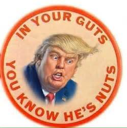 Image result for in your guts you know he's nuts trump