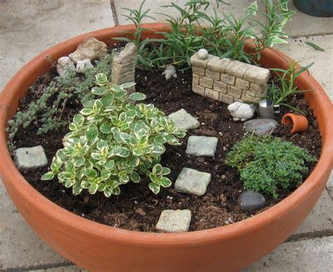 dish garden containers container garden wall dish gardening