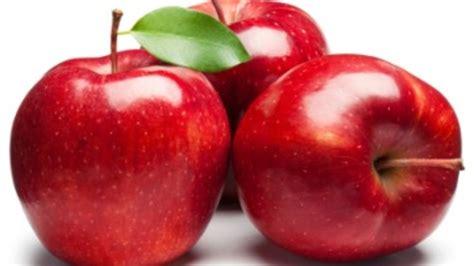 apple to apple apples askfruits