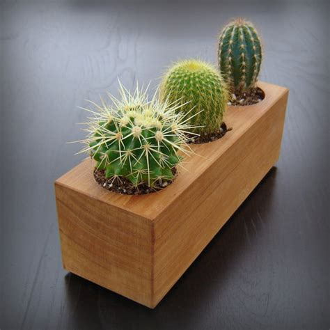 indoor wood planter modern minimalist succulent planter in reclaimed cedar