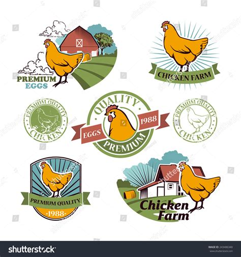 vintage chicken vector