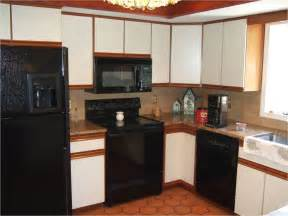 Kitchen Cabinets Home Depot Prices Home Depot Cabinets On Budget Home And Cabinet Reviews