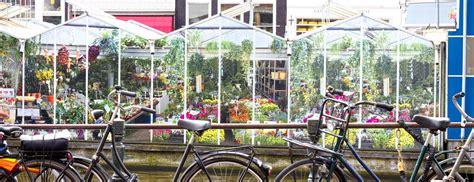 mercato fiori mercato dei fiori amsterdam visitare il bloemenmarkt