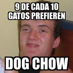 Stoner Dog Meme Generator - meme stoner stanley 9 de cada 10 gatos prefieren dog