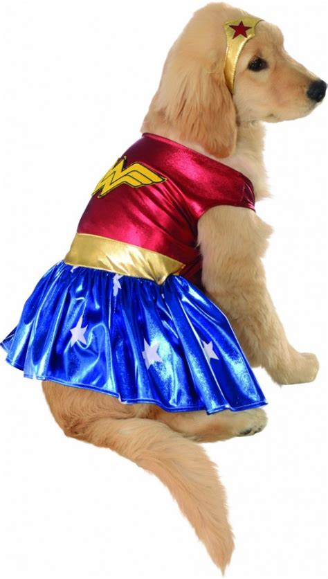 costumes for large dogs how to measure your pet for costumes for large dogs