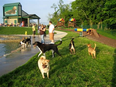 wags park 15 cincinnati things to do entertrainment junction