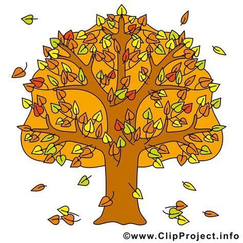Kostenlose Bilder Herbst by Baum Clip Herbst Bilder Gratis