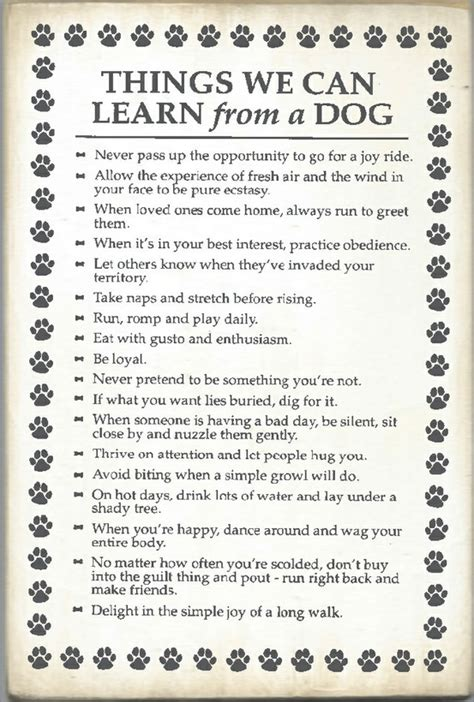 10 Things Can Learn From by Things We Can Learn From A