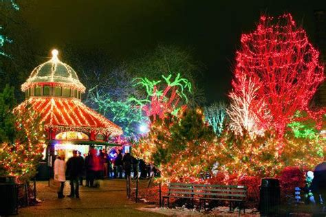 Zoo Lights Chicago by Lincoln Park Zoo Sweet Home Chicago