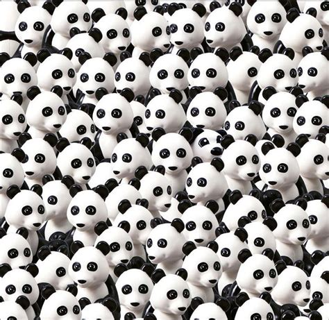 Find In The Spot The Can You Find The Lego In The Lego Pandas