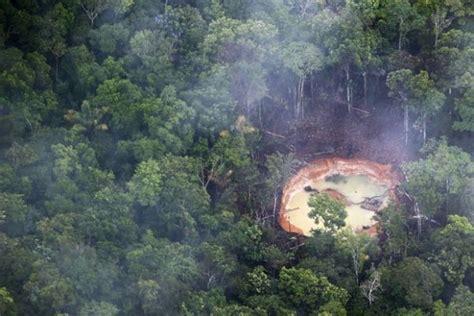 por una gentil floresta 8426374646 em 9 pa 237 ses floresta amaz 244 nica perdeu 240 mil km 178 de 2000 a 2010 not 237 cias de mt olhar direto