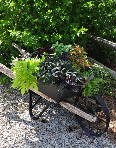 Wheelbarrow Garden Planters by 3224 Best Images About Rustic Country Garden On Garden Junk Chair Planter And