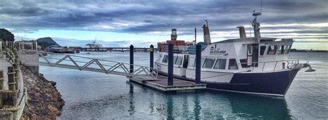 boat r five dock bay explorer island wildlife tour cruise in tauranga