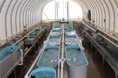 raceway covers fish hatcheries weatherport