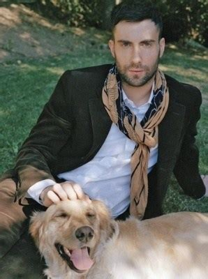 adam levine golden retriever archives the daily golden