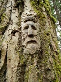 Treehouse Wood - 40 amazing tree wood carving pictures