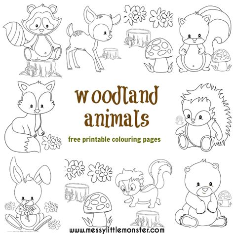 woodland animals an colouring book for dreaming and relaxing books woodland animal colouring pages