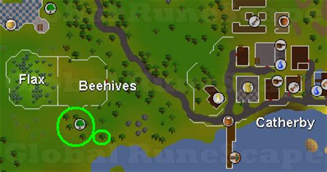 best place to cut yews runescape questions sal s