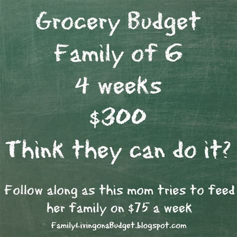groceries budget ideas  pinterest weekly