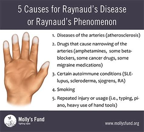what causes raynaud s raynaud s disease or