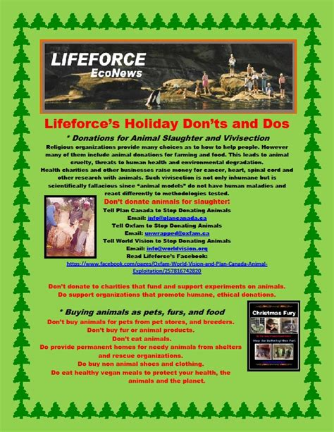 the do s and don ts of christmas tree decorating telegraph lifeforce holiday don ts and do s part 1 lifeforce