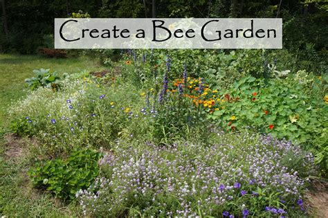 Bee Gardens the backyard farming connection planning a bee garden