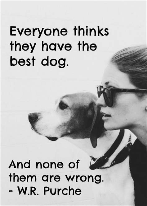 puppy sayings the 25 best quotes ideas on puppy quotes