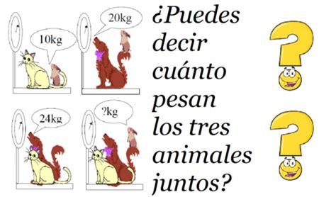 preguntas capciosas para adivinar acertijos para adivinar animales adivinanzas y trabalenguas